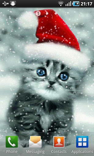 Скачать Christmas Cat для Андроид