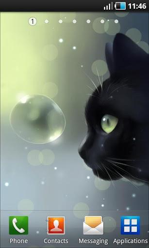 Скачать Curious Cat Lite для Андроид