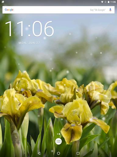 Скачать Iris Flowers для Андроид