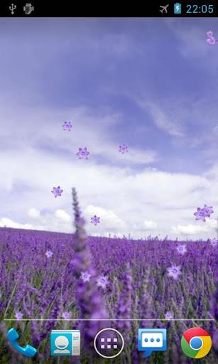 Скачать Лаванда живые обои / Lavender LWP для Андроид