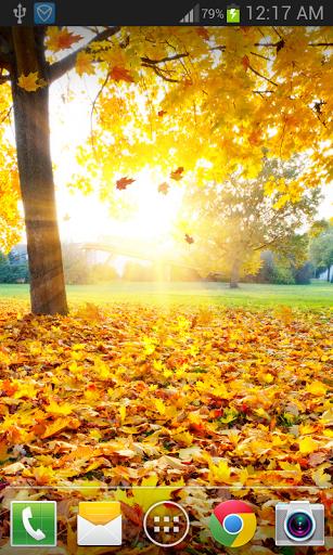 Скачать Maple Leaf Live Wallpaper для Андроид