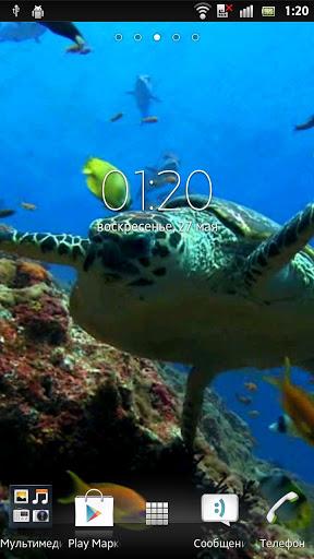 Скачать Морская черепаха Живые обои / Sea Turtle Live Wallpaper для Андроид