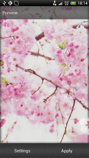 Скачать Сакура обои / Sakura Live Wallpaper для Андроид