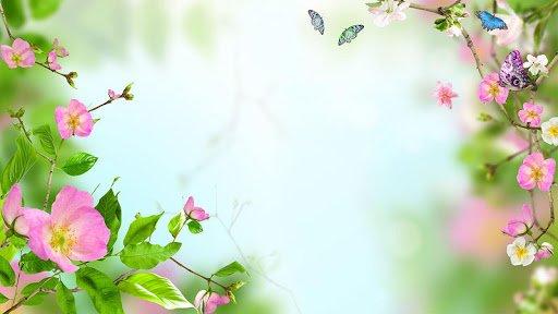 Скачать Цветы Живые Обои для Андроид