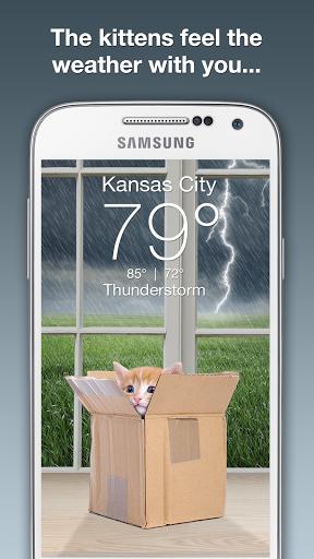 Скачать Weather Kitty для Андроид