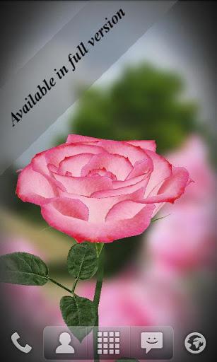 Скачать Живые обои Роза 3D / 3D Rose Live Wallpaper Free для Андроид