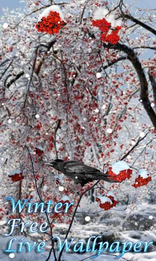 Скачать Зима живые обои 3D / Winter Free LWP для Андроид